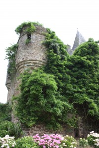 Chateau de l'Espinay  juin 2018 (28)